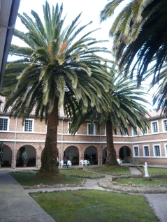 Courtyard in Usaquén