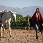 Owning a piece of Argentina's Wine Country
