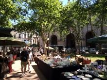 At the Plaza de Constitución